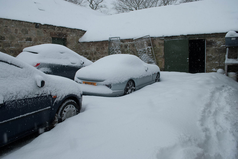 Scroghill Snow (3 of 4)