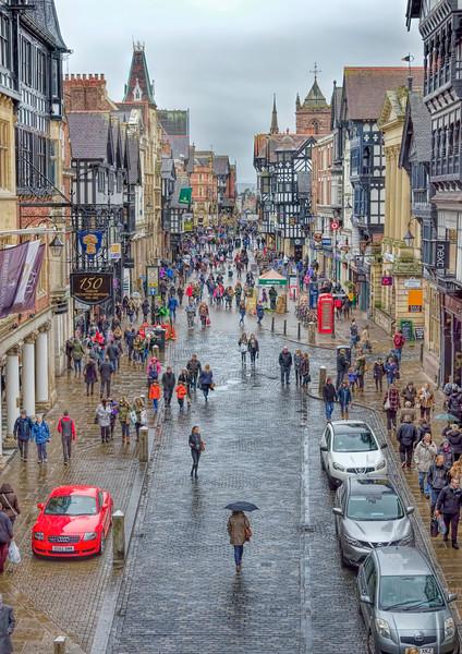 Chester in the rain _SP26309.jpg