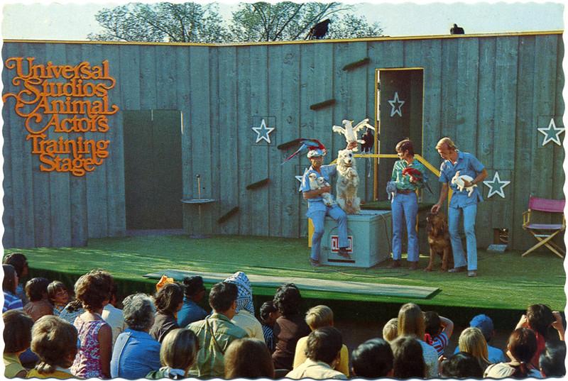 Animals Actors Training Stage