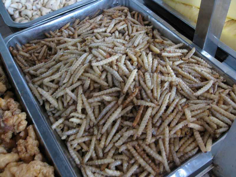 Fried bamboo worms, anyone?  These have been cooked and ready to eat.  I did not try them.