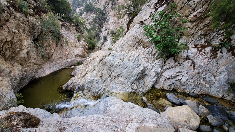 20190621278-Switzer Falls, Bear Canyon.jpg