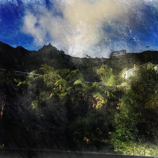 new zealand hill.jpg