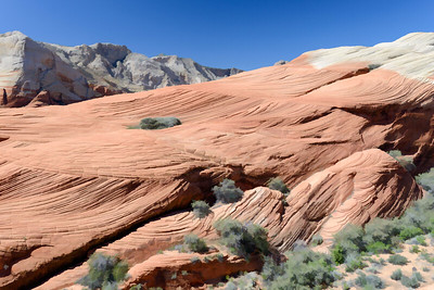 UT-Snow Canyon State Park