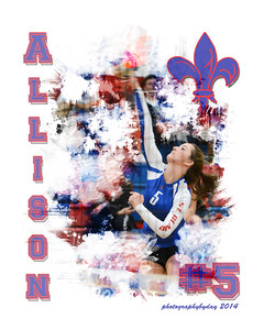 Volleyball Collages