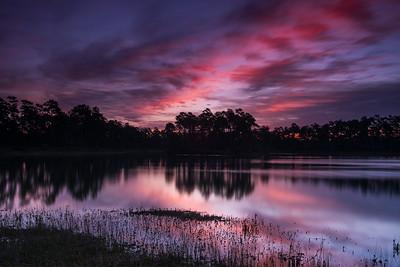 Everglades Views