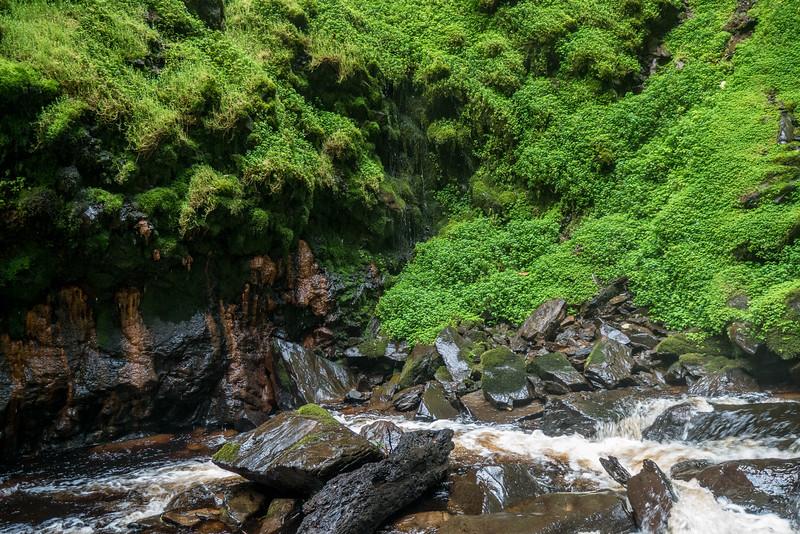 Nyugwe-Rwanda-41.jpg