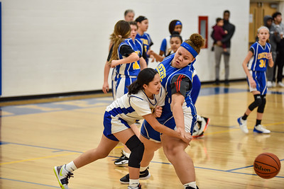 01/23 - Deere 8th Girls Basketball vs Glenview