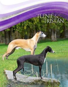 Teenie Puppies 2020