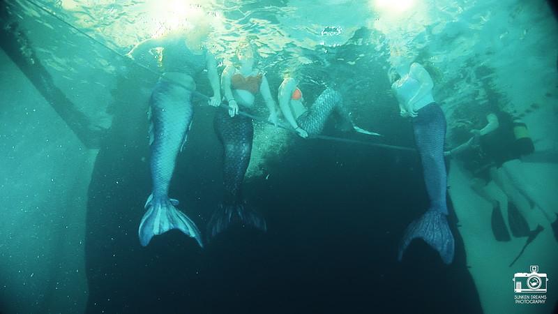 Mermaid Re Sequence.02_03_44_02.Still104.jpg