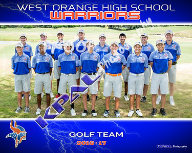 Boys Golf Team 2016