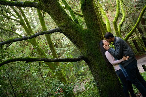 Jill and Raj Engagement @ Nisene Marks, Aptos