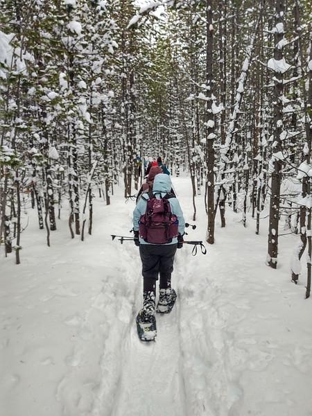 Winter Adventures 1 1/12-1/17