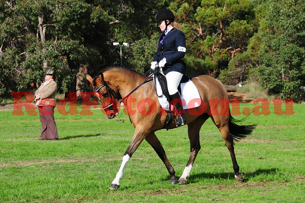 Andalusian Horse Association of Australasia-WA