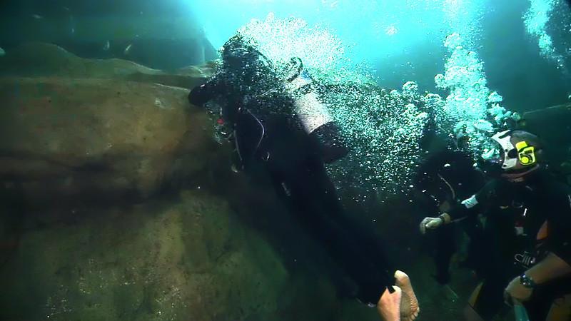 Underwater Walk Edit 45secs.00_00_33_13.Still040.jpg