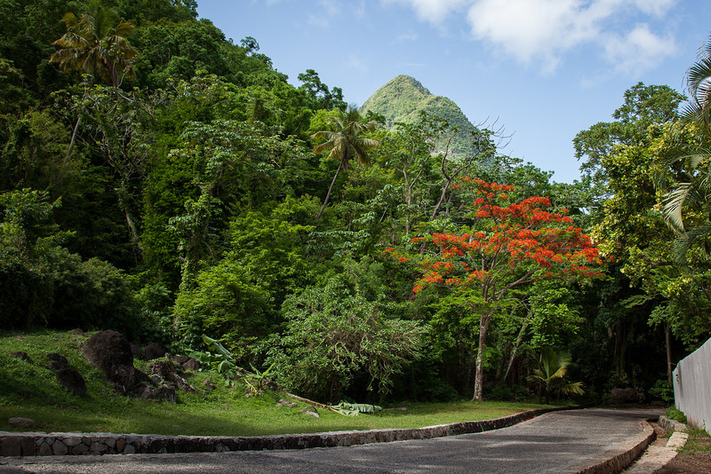 12May_St Lucia_857.jpg