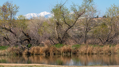 San Bernardino County Scenic & Nature Images