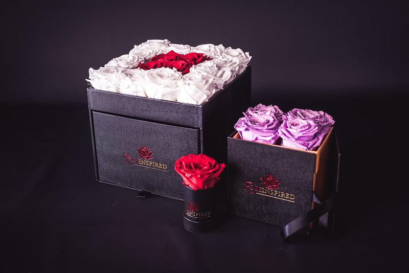 Rose Inspired (3rd Day)-.jpg
