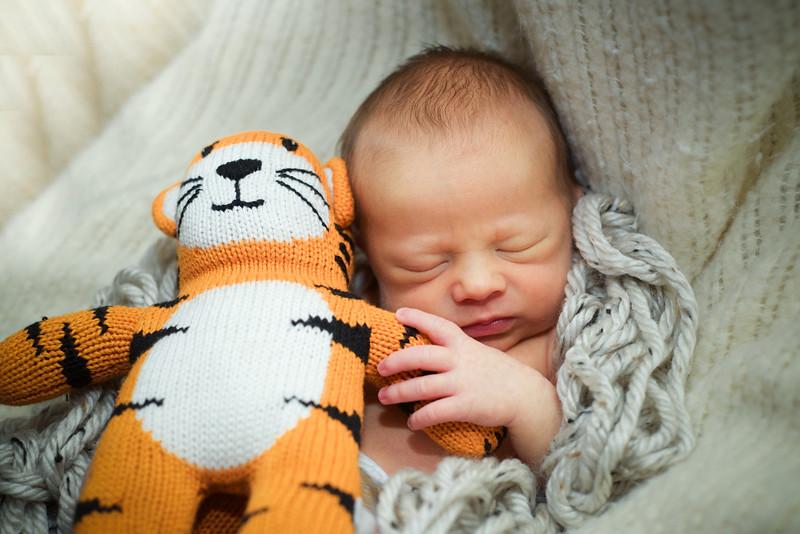 Snell - Henry Newborn - 2.2015