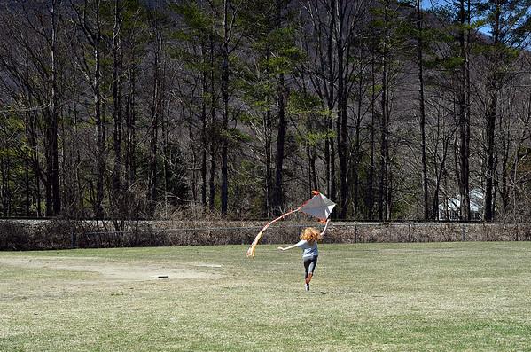 Kites in Arlington - 041121