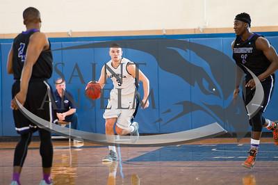 Men's Basketball vs. Bridgeport (1/3/16)