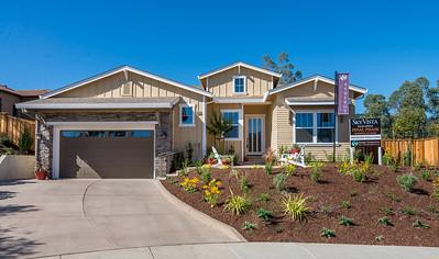 SYNERGY_Sky Vista_Home/Sales