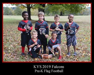 KYS 2019 Falcons