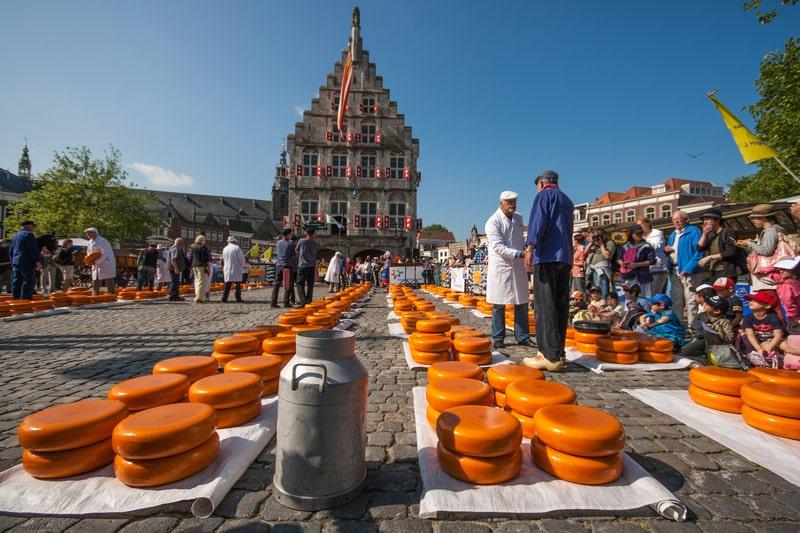 amsterdam day trips - gouda cheese market