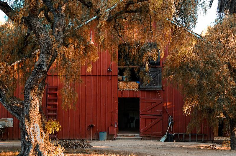 Los Alamitos Ranch-5