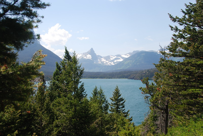 2008-07-24-YOCAMA-Montana_1964.jpg