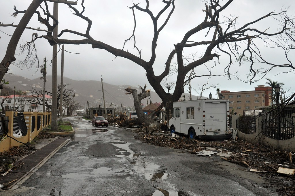 . Trees stand barren and debris lays on the roadside, caused by Hurricane Maria in Road Town, on the island of Tortola, in the British Virgin Islands, early Wednesday, Sept. 20, 2017.  (AP Photo/Freeman Rogers)