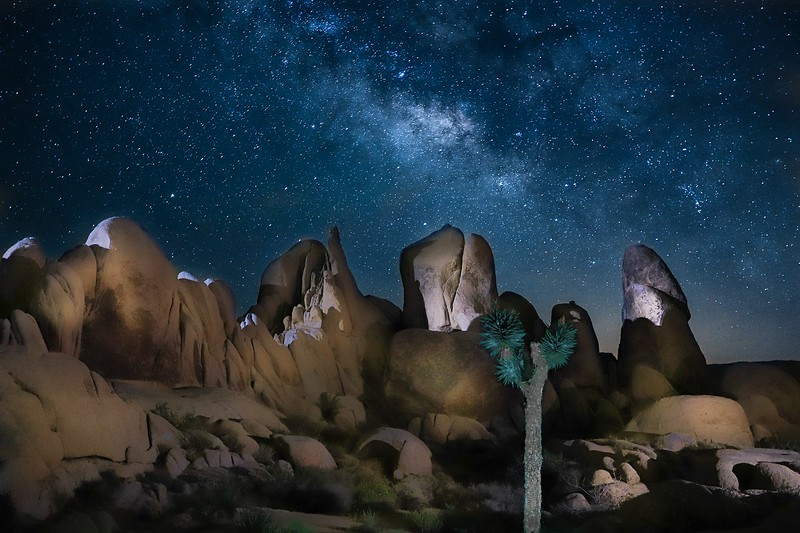 Only 3 lights on the rocks here. Mine is the one at the right, being guided by Matt. Matt's cell phone lights up the tree, and the other light from the left is another light painter.
