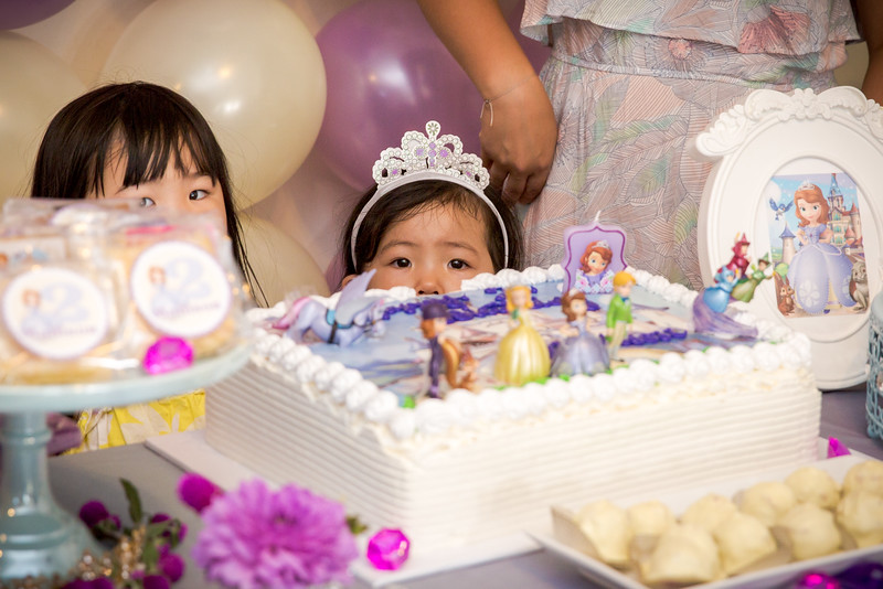 madisons_2nd_birthday-29.jpg