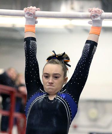 Upstate Eight Conference Gymnastics