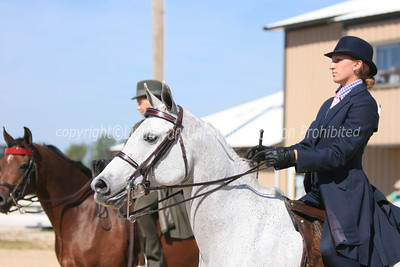 Sunday Saddle Seat Classes