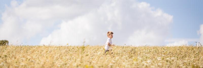 2018 - Lullingstone in July 006 3x1 crop
