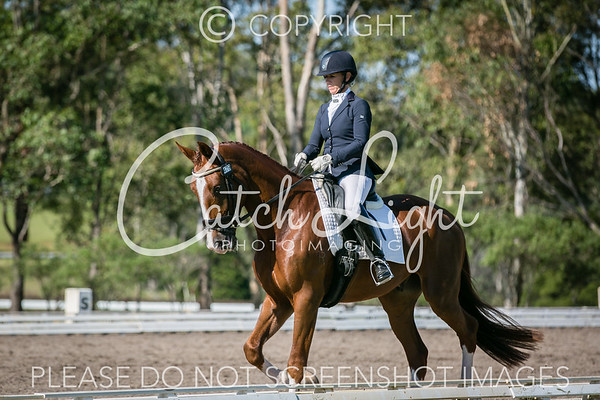 Equestrian Events 2017