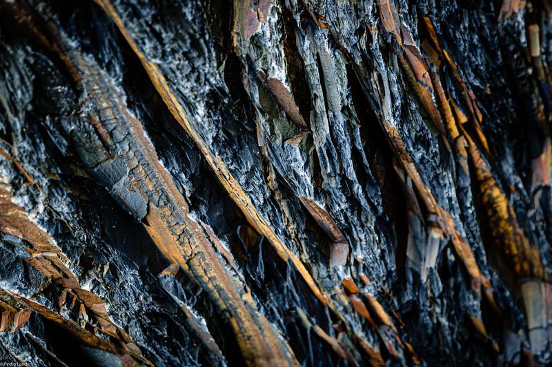 Rock at Blackchurch