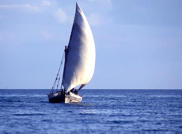 Dao Zanzibar.jpg