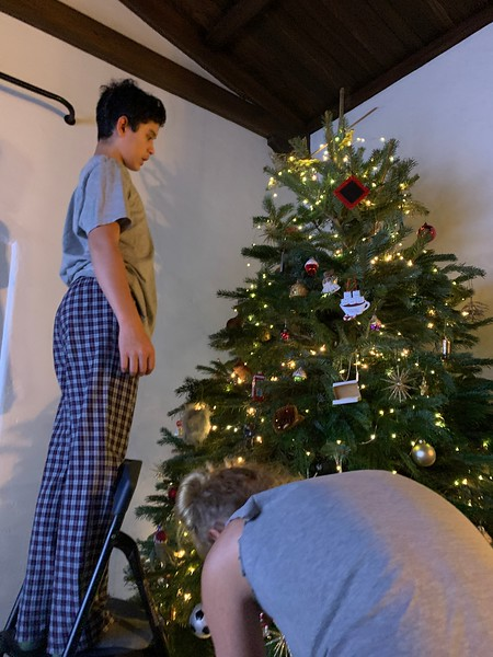2019.12.01 Christmas Tree