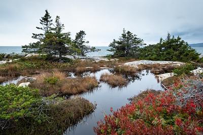 Acadia :: October 2018
