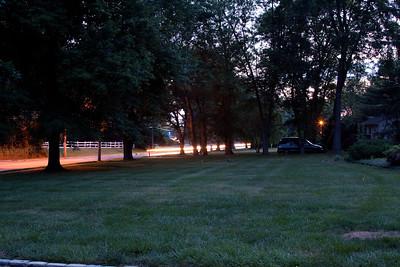Fireflies 2011