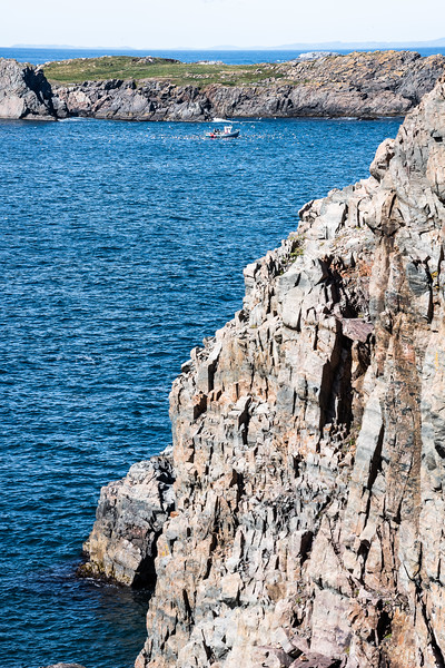 views from Cape Bonavista