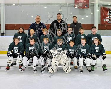 EPSHL Elementary Group Photo & Remaining Teams 2014