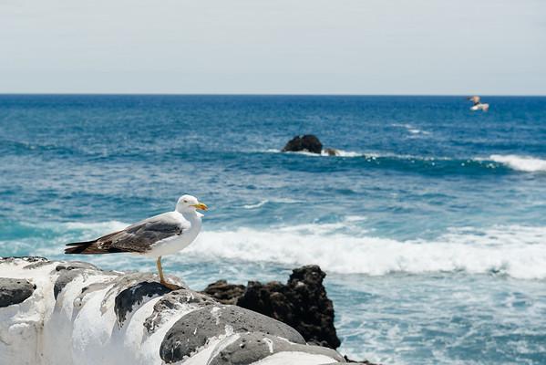 El Caletón del Golfo  (el Golfo, Lanzarote)
