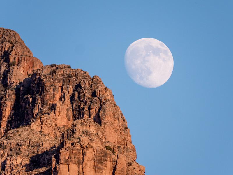 Grand Canyon-272.jpg