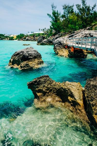 Bermuda-15.jpg