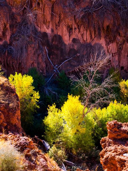 Arizona-41.jpg