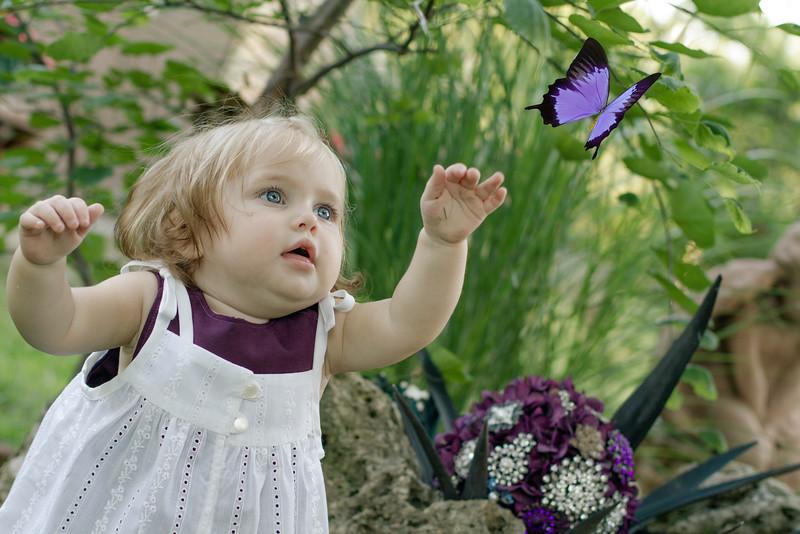 Braeya butterfly.jpg