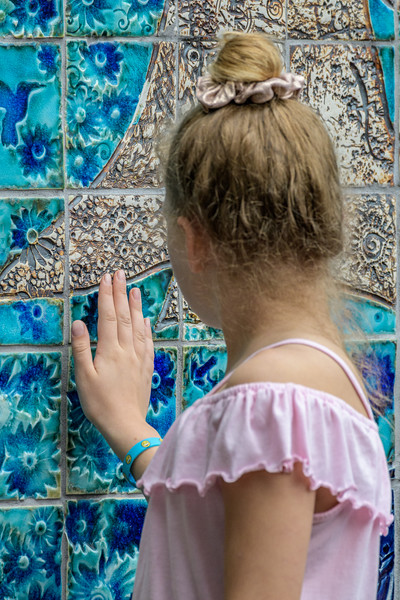 OHC Mosaic Unveiling-_5001702.jpg