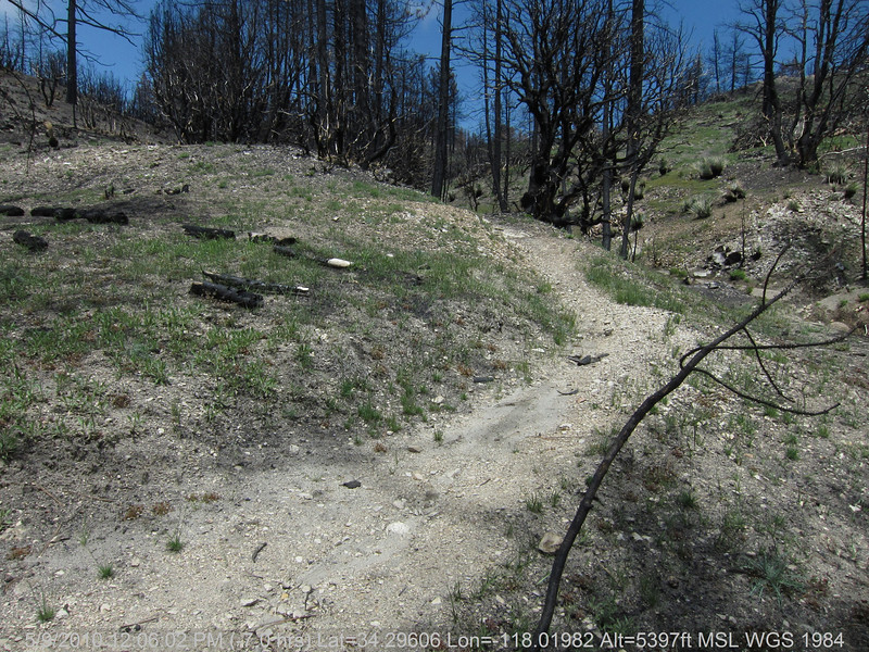 20100509086-Trail Recon, Vetter Mountain Trail.JPG